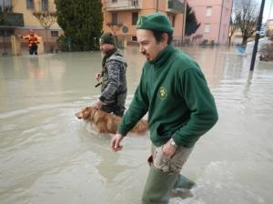 animali salvati alluvione emilia