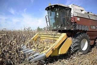 finanziamenti agricoltura regionae