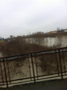 Il fiume Panaro visto dal ponte di Bomporto