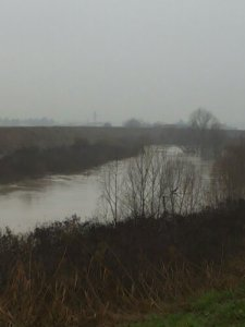 fiume secchia emilia